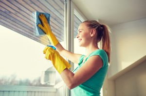 Best Window Cleaning Company Los Angeles