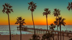 Move Out Cleaning Manhattan Beach