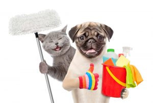 House Cleaning Services West Los Angeles-4