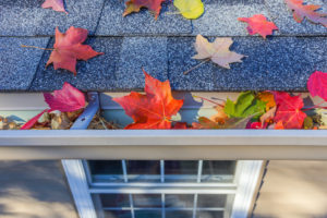 colorful leaves on a home's roof and gutter
