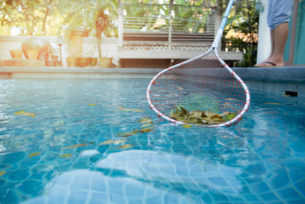 a person cleaning leaves out of a swimming pool using a net