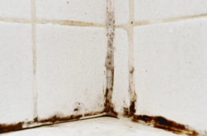a close up of filthy and discolored grout and tiles